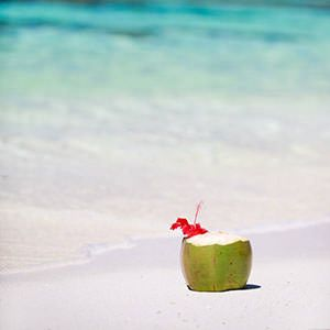 海南文昌椰子:品味不一样的椰子风情!