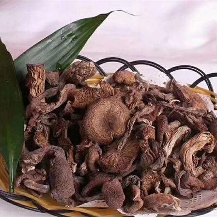 东北大兴安岭野生特产榛蘑500g/包邮
