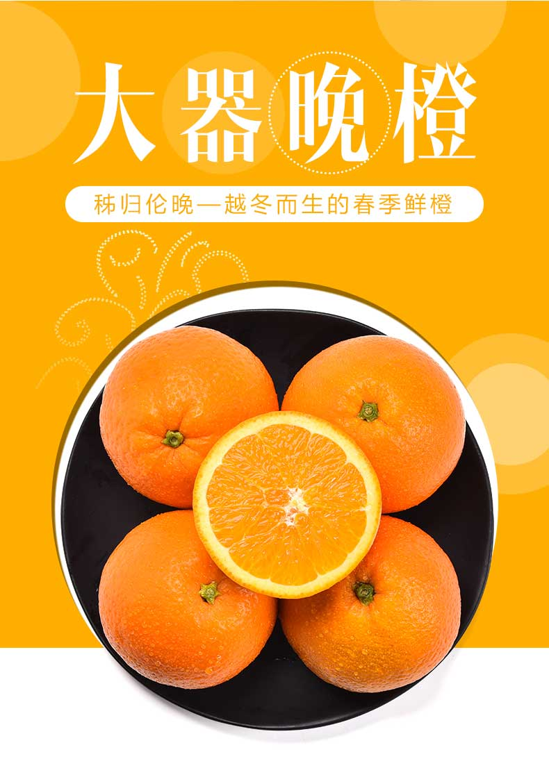 伦晚鲜橙详情03.jpg