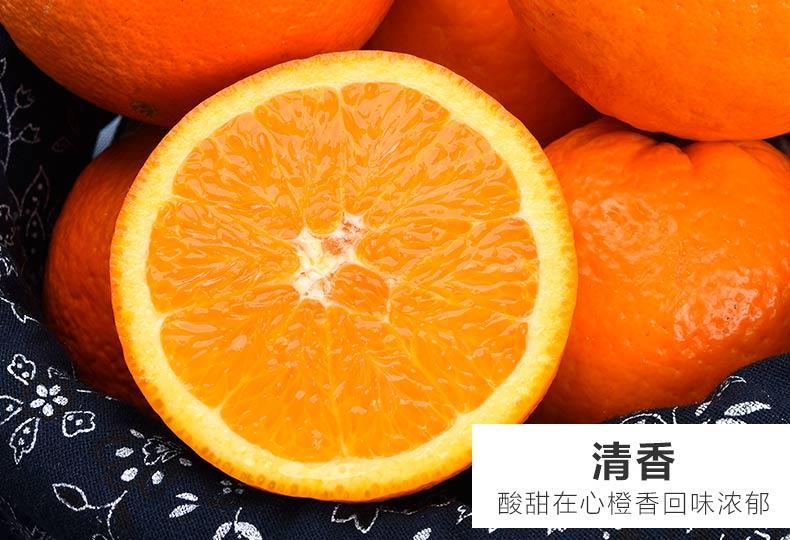 伦晚鲜橙详情07.jpg