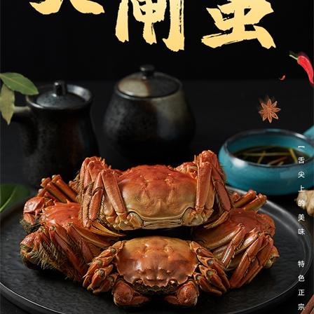 【1688型】阳澄湖大闸蟹公4.5两/5只   母3.0两/5只生鲜礼盒